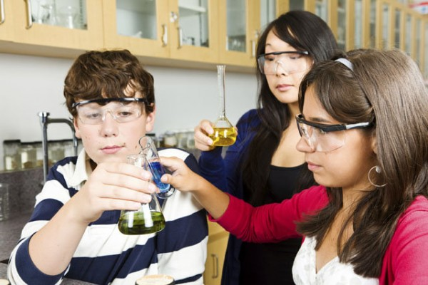 Visitor Presumption U.s. Business Relies On Upon Robust STEM Training