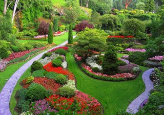 Designing A Suitable Garden For Your Home
