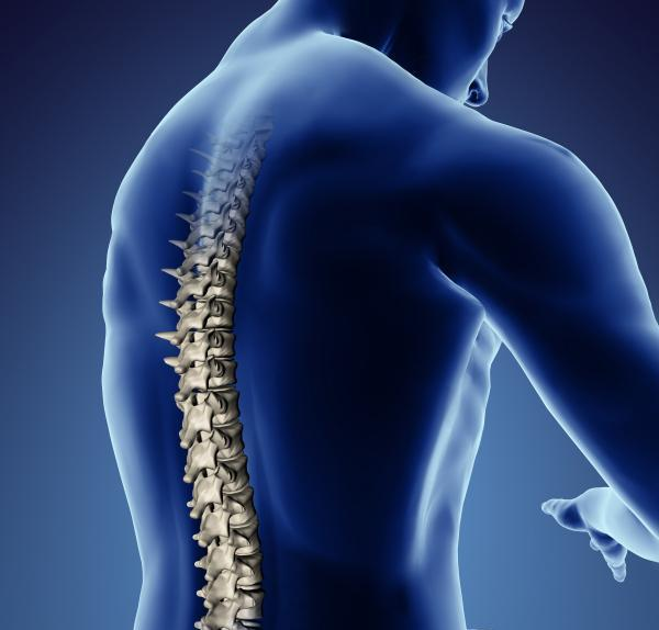 The Latest Facts About Spinal Cord Injury