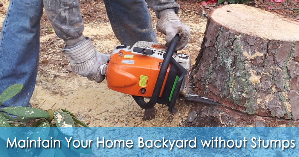 How Can You Maintain Your Home Backyard Without Stumps