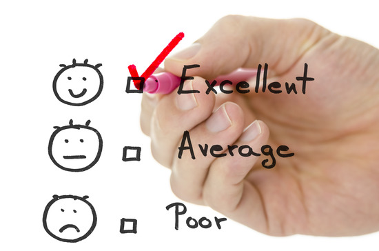 How Important Is The Customer Survey To Your Business?