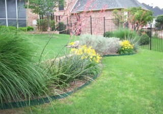 How To Pick The Perfect Landscaping Plants For Your Yard