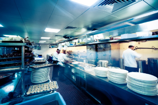 How To Choose The Best Restaurant Exterminator For Your Commercial Kitchen?