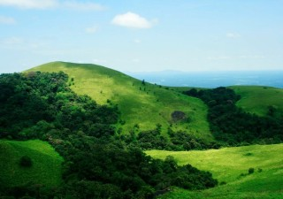 Experience The Allure Of The Greens and The Peaks In Coorg