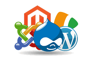 How To Choose The Best CMS Hosting Service Provider?