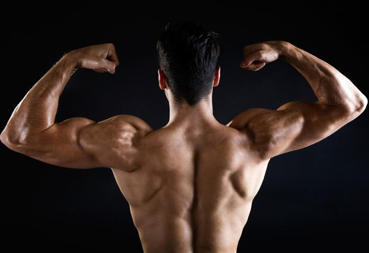 Strength and Muscle Gain In Package For You