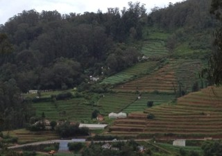An Encounter With The 5 Best Places To Visit In Ooty