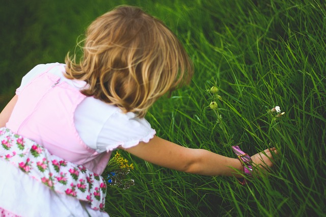 5 Health and Safety Tips For Spring