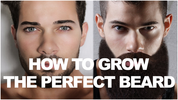 Face Shape and Beard Style: Finding The Perfect Combo