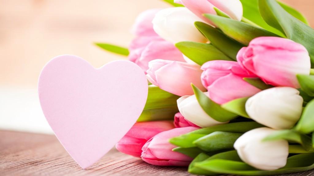 tulip valentine day