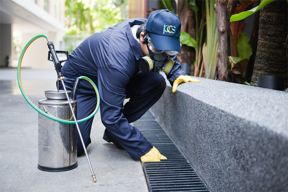 Avail Finest Pest Control Service In Your Locality!