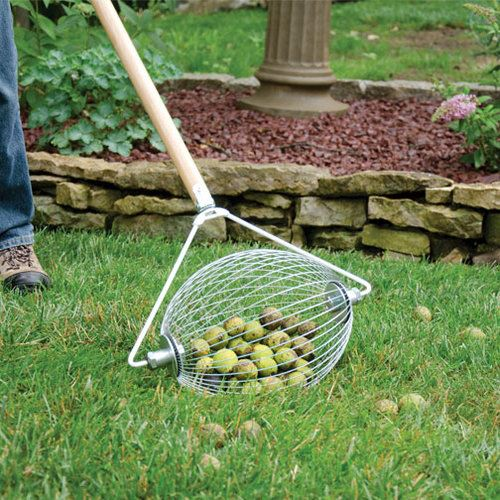 Essential Gardening Tools: The Nut Gatherers and The Broadfork
