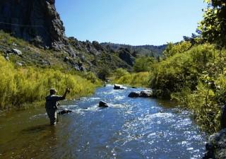 training to catch crappie fish