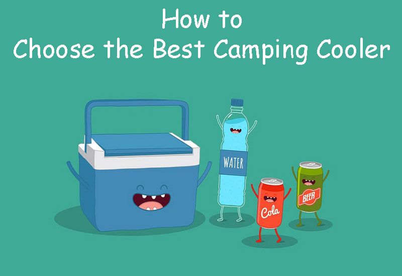 How To Choose The Best Camping Cooler For Your Needs?