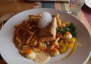 Hire The Best Pest Control Company For Your Commercial Services