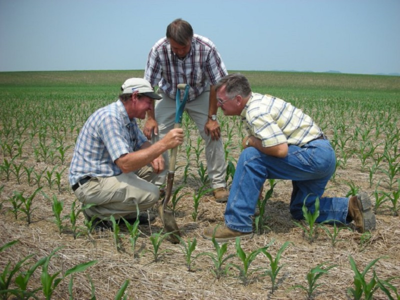 An Ancient Drought-Friendly Farming Process Could Become The New Standard In US Farming