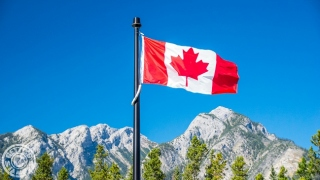 Things You Need To Know About Visitor Visa in Canada
