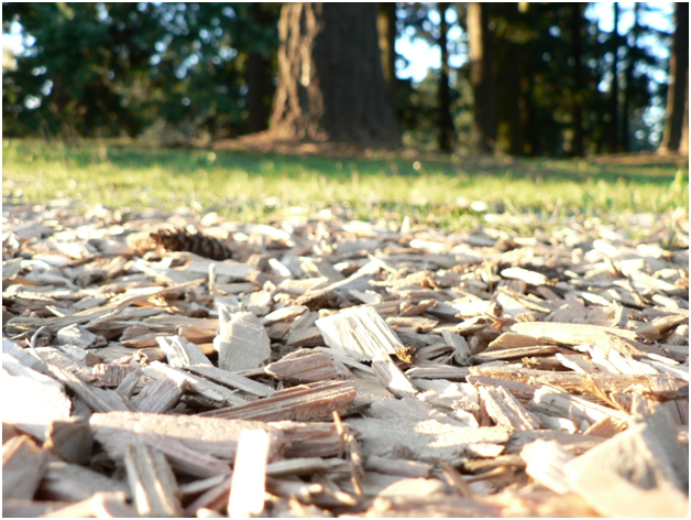 Benefits Of Woodchip As Safety Surfacing