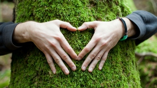 The Importance Of Being And Staying Connected With Nature