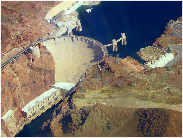 British Stag Swims Across The Notorious Hoover Dam