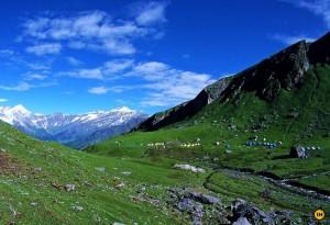 Gulaba to Rola Khuli