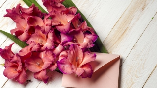 International Flower Delivery - Are There Any Special Regulations You Should Know About