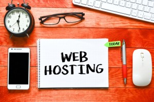 A Quick Guide To Choosing The Best WordPress Hosting Provider