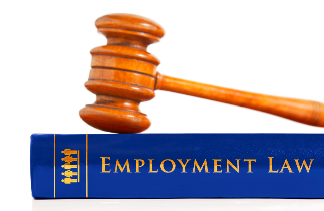 What Does An Employment Lawyer Do?