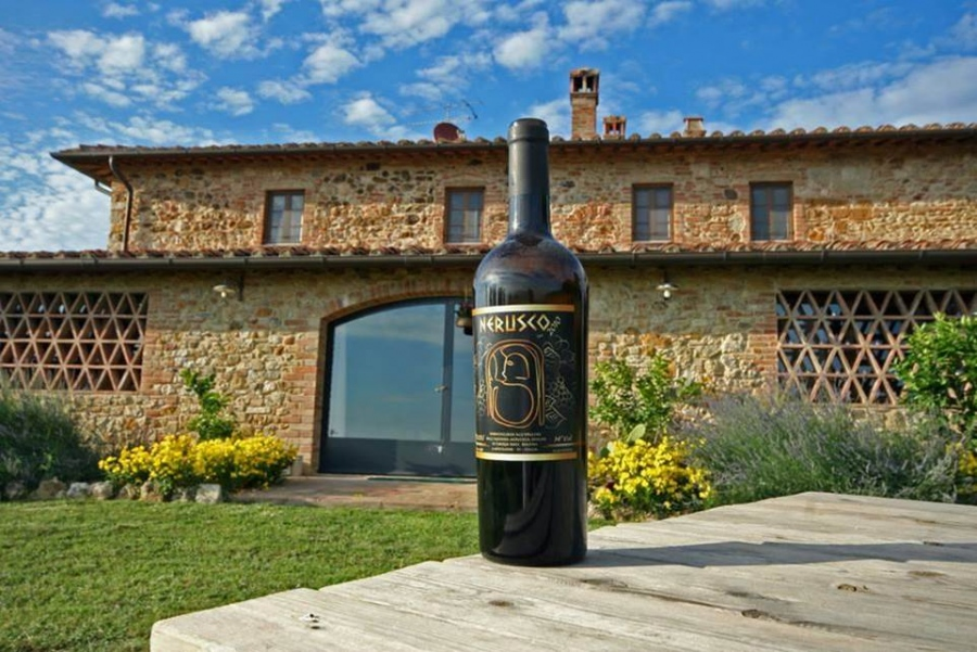 Essential Wines In France And Baghera Wines' Expertise