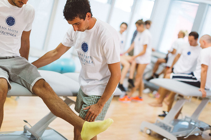 ALL YOU NEED TO KNOW ABOUT PHYSIOTHERAPIST JOBS