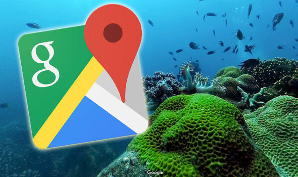 Google Street View- A Saviour