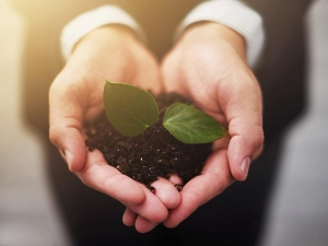 Running A More Eco-Friendly Workplace Environment