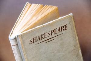 William Shakespeare's Best Plays